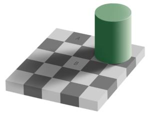 Grey square optical illusion.jpg